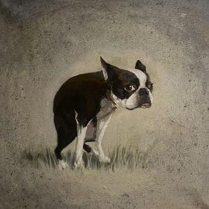Серия «Собаки» 01